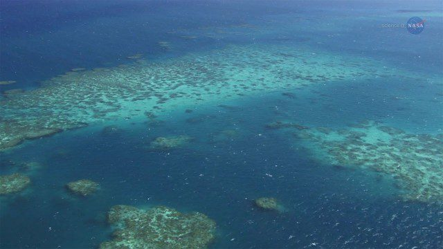 A New View of Coral Reefs