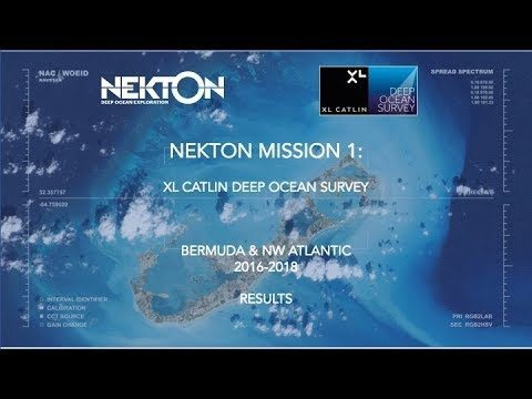 Nekton Mission I – Discovering the Rariphotic Zone