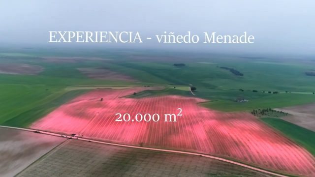 Agricultural Spraying Drone in Spain