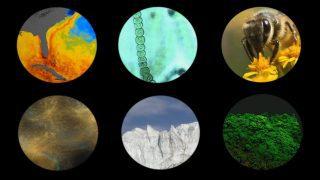 NASA Explores Earth's Connections